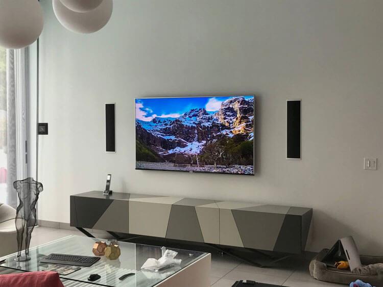 Flat Mounted TV